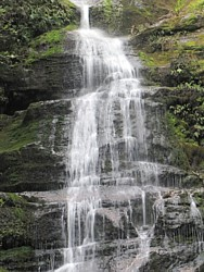 Bastion Cascades in Meander Forest Reserve